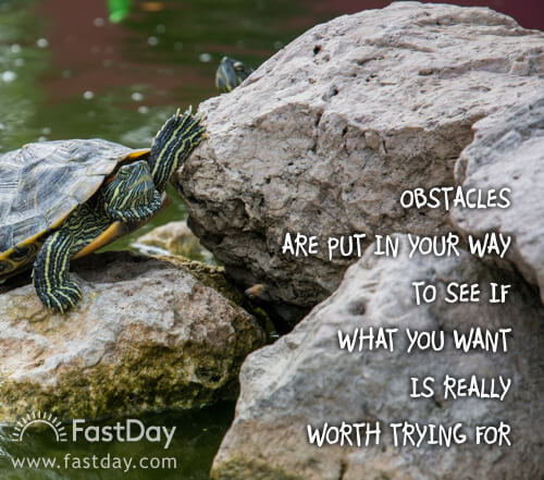 obstacles-are-put-in-your-way-to-see-if-what-you-want-is-really-worth-fighting-for